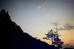 Puesta del sol en montaña con el árbol, estilo del vintage Imagen de archivo libre de regalías