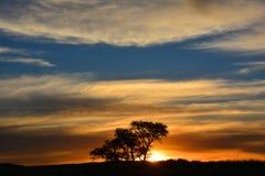 Puesta del sol en Namibia en el parque nacional de Namib-Naukluft Foto de archivo libre de regalías