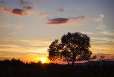 Puesta del sol en naturaleza mientras que camina Fotografía de archivo