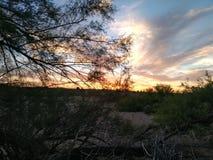 Puesta del sol en noche del desierto fotos de archivo