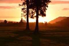 Puesta del sol en Nueva Zelandia Fotos de archivo libres de regalías