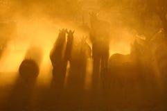 Puesta del sol en Okaukeujo, Namibia Imagen de archivo libre de regalías