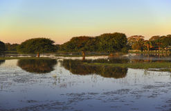 Puesta del sol en Pantanal Fotografía de archivo
