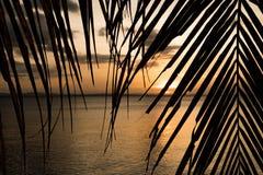Puesta del sol en paraíso foto de archivo libre de regalías