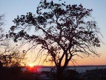 Puesta del sol en Porto Alegre, el Brasil imágenes de archivo libres de regalías