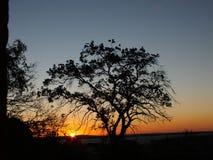Puesta del sol en Porto Alegre, el Brasil Imagen de archivo libre de regalías