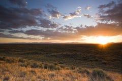 Puesta del sol en pradera imagen de archivo libre de regalías