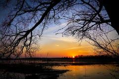 Puesta del sol en reserva de naturaleza Fotografía de archivo libre de regalías