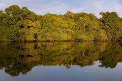 Puesta del sol en Rio Negro Imagen de archivo libre de regalías