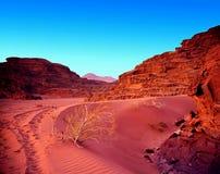 Puesta del sol en ron del lecho de un río seco del desierto de Jordania. Imagenes de archivo
