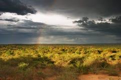 Puesta del sol en sabana africana Imágenes de archivo libres de regalías