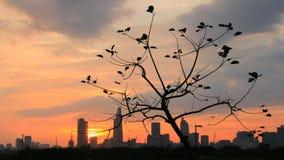 Puesta del sol en Saigon Foto de archivo libre de regalías