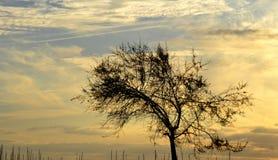 Puesta del sol en Salerno Imagen de archivo
