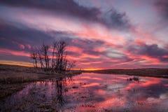 Puesta del sol en Saskatchewan fotografía de archivo