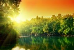Puesta del sol en selva Imágenes de archivo libres de regalías