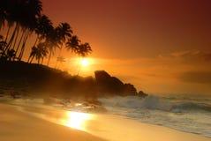 Puesta del sol en Sri Lanka Foto de archivo libre de regalías