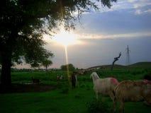 Puesta del sol en Taxila Imagen de archivo libre de regalías