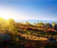 Puesta del sol en tundra de la montaña fotos de archivo
