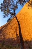 Puesta del sol en Uluru fotografía de archivo