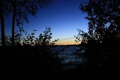 Puesta del sol en un arbusto Fotos de archivo