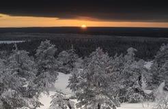 Puesta del sol en un bosque Fotografía de archivo