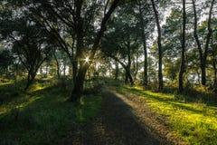 Puesta del sol en un camino foto de archivo