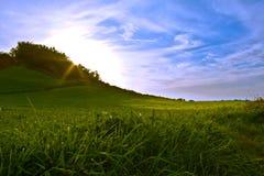 Puesta del sol en un campo verde foto de archivo