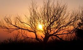 Puesta del sol en un canto de la montaña Foto de archivo libre de regalías