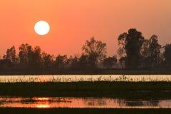 Puesta del sol en un pantano salvaje del nepali, en Bardia, Nepal fotografía de archivo libre de regalías