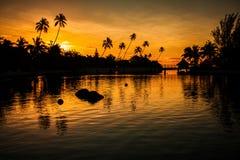 Puesta del sol en un paraíso tropical con las palmeras Imagen de archivo
