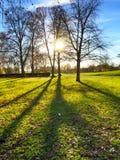 Puesta del sol en un parque Imágenes de archivo libres de regalías