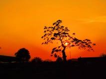 Puesta del sol en un parque Fotos de archivo