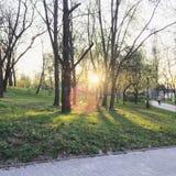 Puesta del sol en un parque de la ciudad Foto de archivo libre de regalías