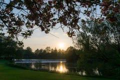 Puesta del sol en un parque sobre la mirada de un lago Fotografía de archivo