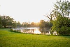 Puesta del sol en un parque sobre la mirada de un lago Fotografía de archivo libre de regalías