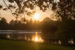 Puesta del sol en un parque sobre la mirada de un lago Imagen de archivo libre de regalías