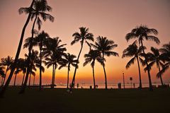 Puesta del sol en Waikiki Hawaii Imagenes de archivo