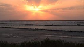 Puesta del sol escénica colorida en el lago Syvash con las nubes hermosas almacen de video