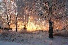 Puesta del sol escarchada en la aldea Imagen de archivo libre de regalías