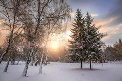 Puesta del sol fantástica del invierno Cielo dramático de la tarde Fotografía de archivo libre de regalías