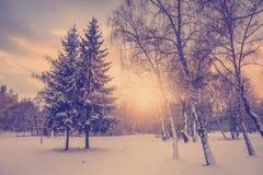 Puesta del sol fantástica del invierno Cielo dramático de la tarde Foto de archivo libre de regalías
