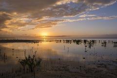Puesta del sol gloriosa de Yucatán Imagenes de archivo