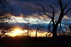 Puesta del sol gloriosa del invierno fotografía de archivo
