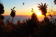 Puesta del sol grande de la costa de Sur Imágenes de archivo libres de regalías