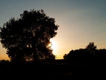 Puesta del sol, Halle, Alemania fotos de archivo