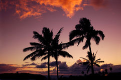 Puesta del sol hawaiana fotos de archivo libres de regalías