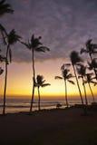 Puesta del sol hawaiana Imágenes de archivo libres de regalías