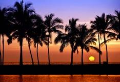 Puesta del sol hawaiana imagen de archivo libre de regalías