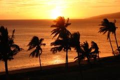 Puesta del sol hawaiana en la playa   Fotografía de archivo libre de regalías