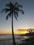 Puesta del sol hawaiana - Kauai   Imagenes de archivo